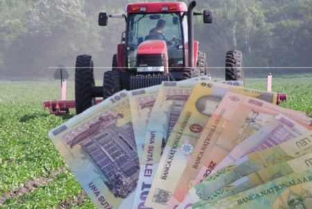 fermieri plata suprfata