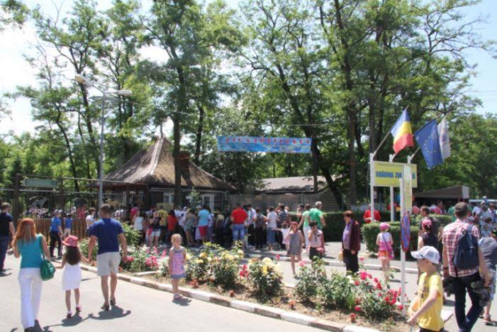 Primăria Râmnicu Vâlcea sărbătoreşte Ziua Copilului