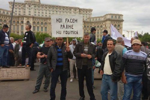 Fermierii protestează în faţa Parlamentului