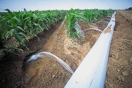 AFIR prelungește cu o lună sesiunea pentru investițiile în infrastructura de irigații