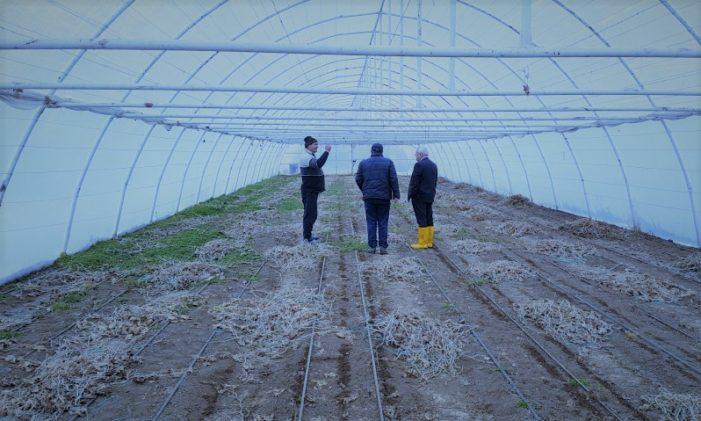 Valcea: Ministrul Agriculturii s-a intalnit cu fermierii din comuna Nicolae Bălcescu