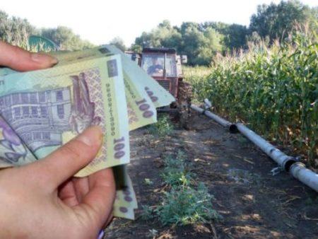 APIA anunta cuantumurile stabilite pentru schemele de sprijin cuplat în sectorul vegetal