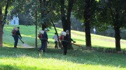 Salubritate Craiova: Începe a șasea etapă a dezinsecției pe domeniul public din acest an