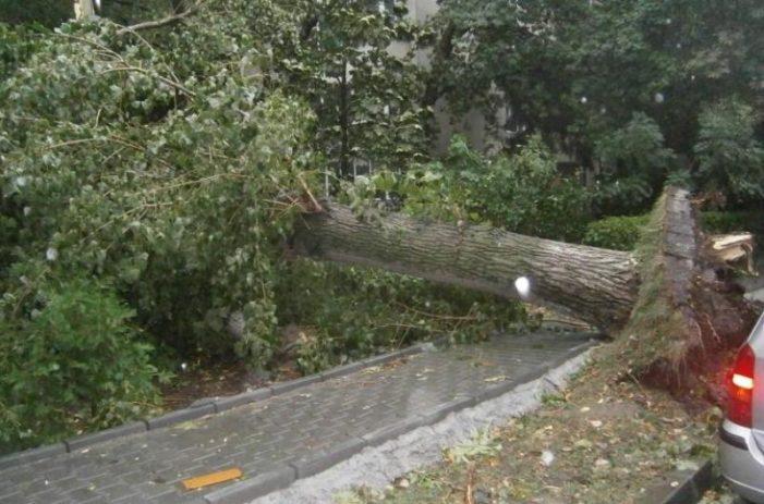 Bilanţ IGSU: 145 de victime, dintre care 8 decedate și 137 rănite,in urma furtunii din vestul țării