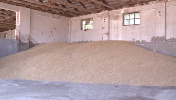 Recomandări pentru depozitarea optimă a producţiei agricole