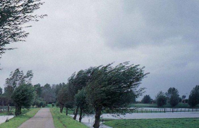 Atenționare meteo de vant puternic in judetele Olt, Gorj, Mehedinti si Valcea