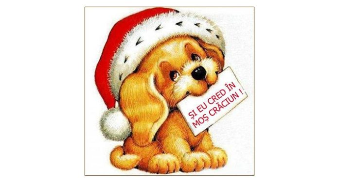 """O nouă ediție a târgului """"Și eu cred în Moș Crăciun"""", la Adăpostul canin Breasta"""