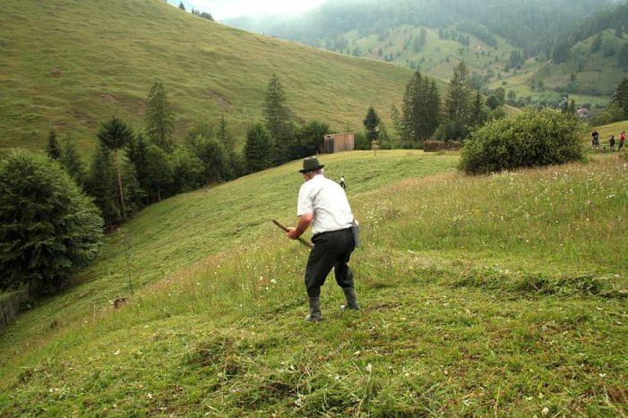 Măsurile de mediu şi climă aplicate în anul 2018 pe terenurile agricole