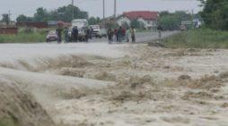God galben de inundatii in Oltenia