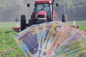 APIA: Au fost autorizate la plată 613.692 cereri unice în sumă totală autorizată de 200 milioane euro