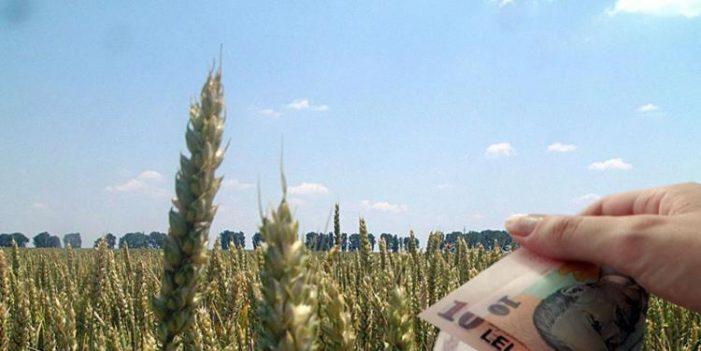 Fermierii își pot asigura culturile cu bani europeni