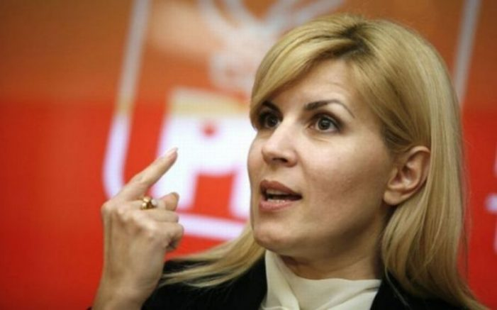 Elena Udrea, şase ani de închisoare