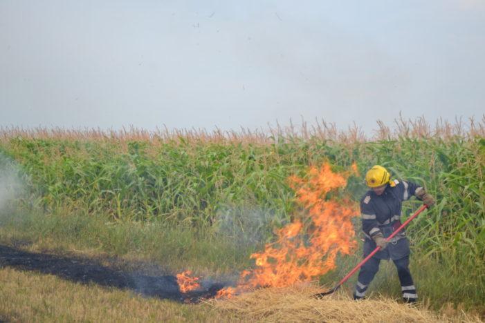 Avertisment APIA: Fermierii care dau foc miristilor dupa treierat risca sa piarda subventiile
