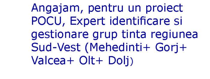 Angajam, pentru un proiect POCU, Expert identificare si gestionare grup tinta regiunea Sud-Vest (Mehedinti+ Gorj+ Valcea+ Olt+ Dolj)