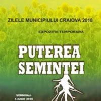 """Muzeul Olteniei: """"Puterea seminței"""" – Expoziție temporară la Secția de Științele Naturii!"""""""