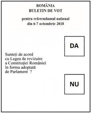 Judetul Dolj, fruntaș la prezența la vot la referendum