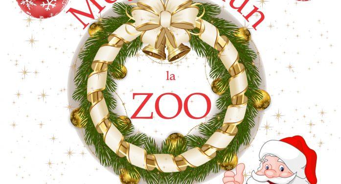 Ramnicu Valcea: Moş Crăciun vine la Zoo, dar şi la copiii din Petrişor