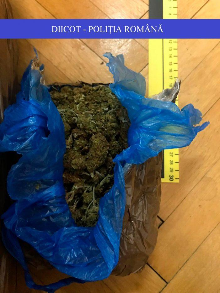DIICOT: Prins la vamă cu peste trei kilograme de cannabis