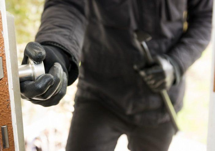 Mehedinti: Prins la furat de bormasini